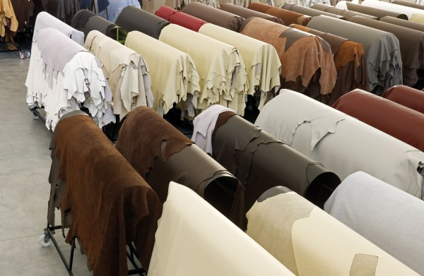 Gamma offers several protected and durable hides that are produced with the highest standards.
