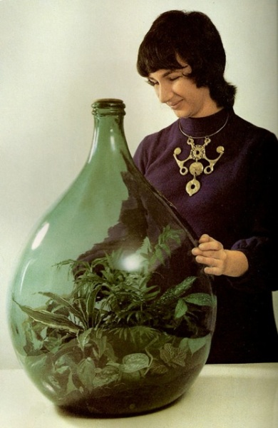 Large bottles and other glass containers were used to house the indoor gardens.